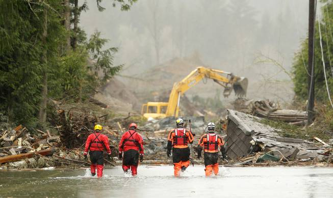 Four search and rescue workers wade through water covering Washington Highway 530 Thursday, March 27, 2014, on the eastern edge of the massive mudslide that struck Saturday near Darrington, Wash. as heavy equipment moves trees and other debris in the background.