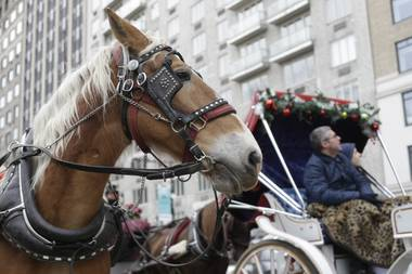 Passengers enjoy a horse-drawn carriage ride near Central Park on New Year's Eve day, Tuesday, Dec. 31, 2013, in New York.