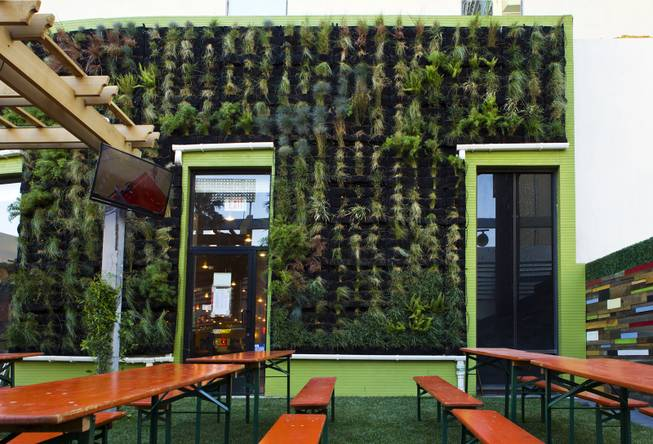 A living wall of plants, real grass and authentic tables add to the genuine feel of the new Bier Garten at the Plaza Hotel and Casino on Tuesday, April 1, 2014.