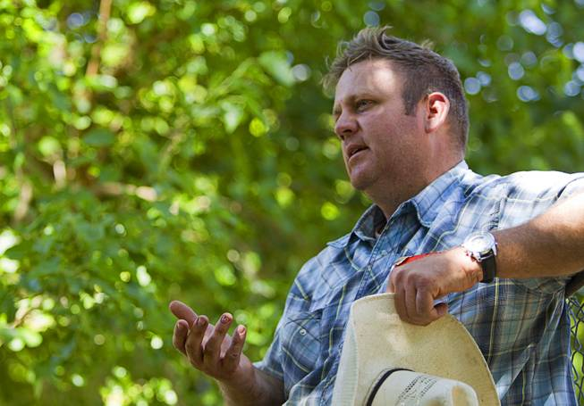 Dave Bundy, one of Cliven Bundy's son's, talks about the family's dispute with the Bureau of Land Management near Bunkerville Sunday, April 13, 2014. The BLM halted their roundup of Bundy family cattle under an agreement reached Saturday.