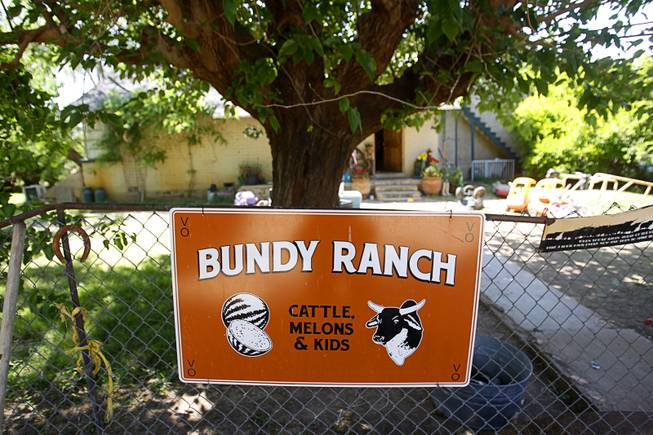 A view of the Bundy ranch near Bunkerville Sunday, April 13, 2014. The Bureau of Land Management halted their roundup of Bundy family cattle under an agreement reached Saturday.