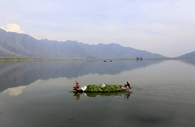 Kashmiri women row a boat filled with weed after cleaning the Dal Lake on Earth Day, on the outskirts of Srinagar, India, Tuesday, April 22, 2014. The weed-clogged Dal Lake is central to Kashmirs tourist trade and efforts are being made to rescue the lake. In the past two decades the lake has shrunk by more than half, according to environmental study reports.