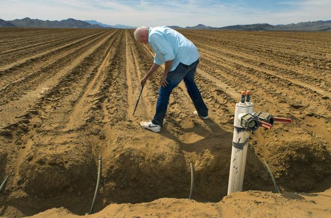 Jim Rhodes details the width apart and depth of drip irrigation lines in a field ready for planting at his new Kingman Farms outside Kingman,  Ariz., on Wednesday, April 9, 2014.