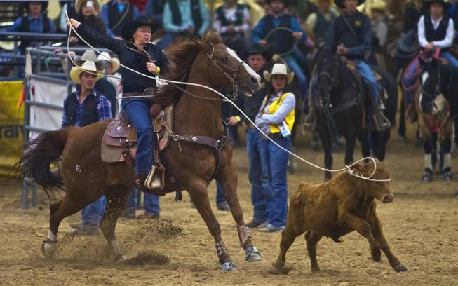 UNLV breakaway rider Tyla Treasure ropes the eyes of a calf during the West Coast Regional Finals Rodeo at South Point Arena  on Friday, April 25, 2014.