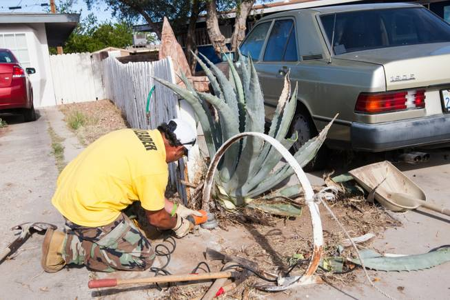 Volunteer Javier Echavarria removes a damaged iron wagon wheel at the home of former magician Gary Darwin, who lost his leg to diabetes, as part of the Rebuilding Together Southern Nevada's annual neighborhood rebuilding event in Las Vegas Saturday, April 26, 2014.