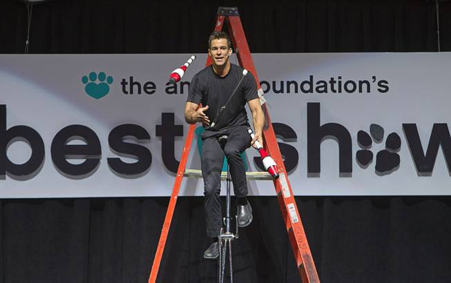 Entertainer Jeff Civillico juggles on a unicycle during the Animal Foundation's 11th annual Best in Show competition at the Orleans Arena Sunday, April 27, 2014. Civillico performs in a 4 p.m. show at the Quad.