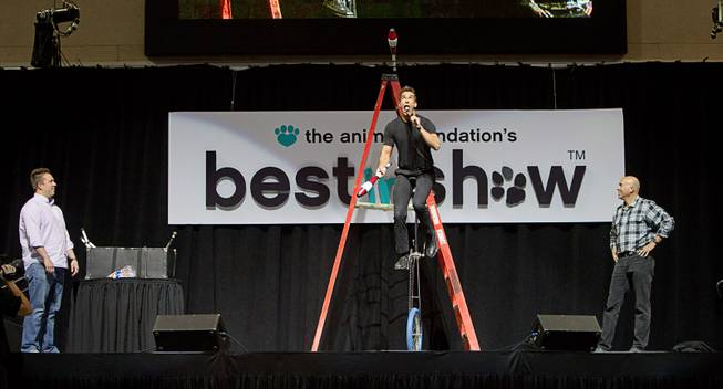 Entertainer Jeff Civillico eats a marshmallow off of a machete as audience members Antonio Trillo, left, and Kevin Wogalter, look on during the Animal Foundation's 11th annual Best in Show competition at the Orleans Arena Sunday, April 27, 2014. Civillico performs in a 4 p.m. show at the Quad.