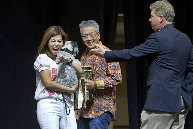 Kerri and Craig Nakamura react after adopting Best of Show winner Jackson, an 18-month-old Lhasa Apso mix, during the Animal Foundation's 11th annual Best in Show at the Orleans Arena Sunday, April 27, 2014. Auctioneer Christian Kolberg is at right. Other dogs were adopted through a random drawing process.
