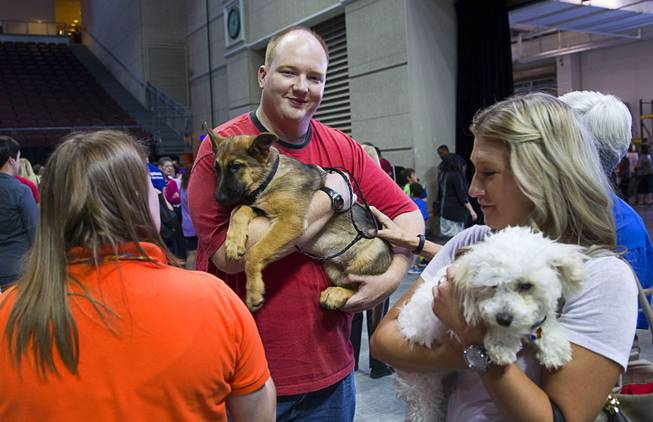 John Anderson holds Mia, a German Shepard mix, during the Animal Foundation's 11th annual Best in Show competition at the Orleans Arena Sunday, April 27, 2014. Anderson provided a foster home for Mia before the show and was given the first option on adopting the dog.