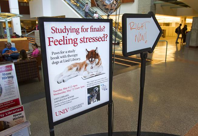 "Signs show the way to ""Paws"" for a Study Break at UNLV's Lied Library Wednesday, May 7, 2014. The library sponsored the second annual study break with certified therapy dogs from Love Dog Adventures to help calm students stressing over final exams."