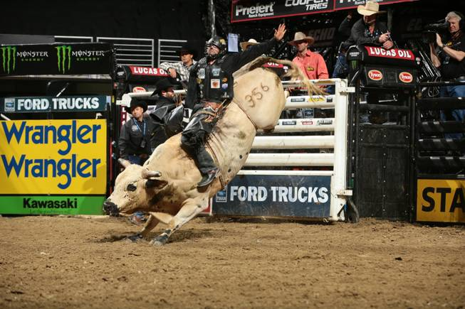 Markus Mariluch attempts to ride Dakota/Berger/Struve's Snitch during the second round of the Des Moines Built Ford Tough series PBR. Photo by Andy Watson