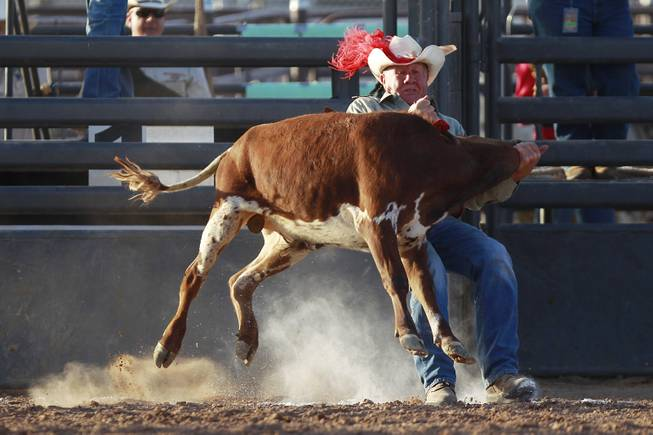 John Beck competes in chute dogging during the Bighorn Rodeo Saturday, May 10, 2014. The Bighorn Rodeo is an annual event put on by the Nevada Gay Rodeo Association.