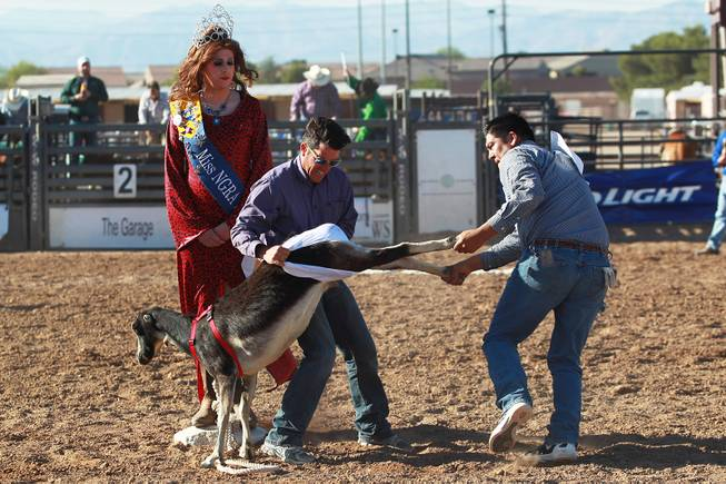 David Lawson and Greg B. take part in the goat dressing competition, in which contestants race to put a pair of underwear on a goat, during the Bighorn Rodeo Saturday, May 10, 2014. The Bighorn Rodeo is an annual event put on by the Nevada Gay Rodeo Association.