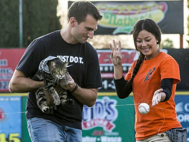 "There was a failed attempt to have Tara ""throw"" a pitch using a baseball attached to a fishing line. Tara may have been nervous, so Ryan Triantafilo helped the cat throw the pitch as he held her at Sam Lynn Ballpark on Tuesday, May 20, 2014, in Bakersfield, Calif."