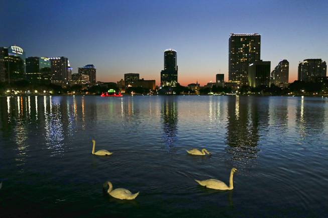 In this May 19, 2014, photo, swans swim in Lake Eola as the sun sets in Orlando, Fla. At the center of the lake is a five-decade-old, green, multi-tiered fountain that is the official icon of the city.