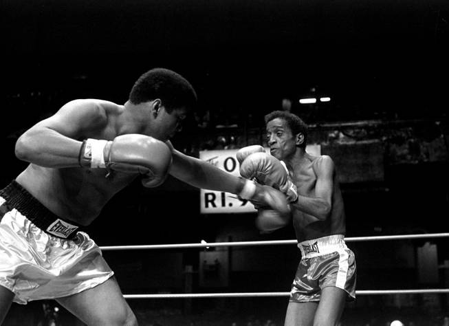 Muhammad Ali is pictured delivering a punch to the body of entertainer Sammy Davis, Jr. during their benefit fight and show at the Olympic Auditorium, Los Angeles, May 8, 1978. The fight was part of a sports program in which Ali fought Richard Pryor, Marvin Gaye, and actor Burt Young to help his former photographer, Howard Bingham, who is running for Congress in the 31st district.