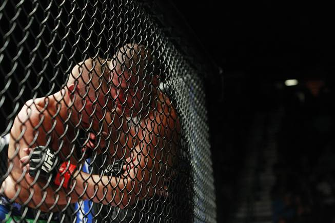 T.J. Dillashaw and Renan Barao push against the octagon fence during their bantamweight title fight at UFC 173 Saturday, May 24, 2014 at the MGM Grand Garden Arena.
