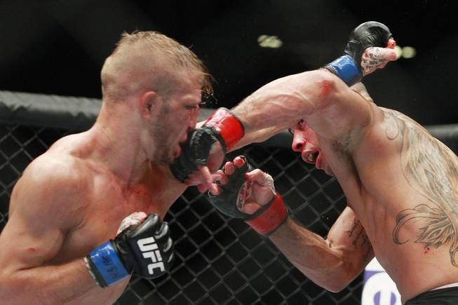 Renan Barao hits T.J. Dillashaw with a left during their bantamweight title fight at UFC 173 Saturday, May 24, 2014 at the MGM Grand Garden Arena. Dillashaw scored an upset TKO in the fifth round.