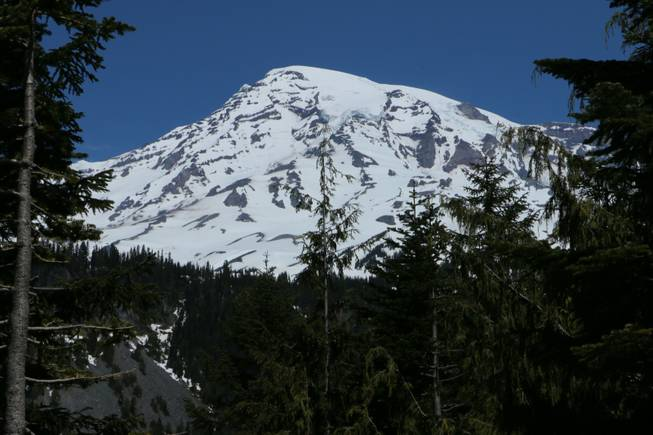 Mount Rainier is seen in the distance from a viewpoint within Mount Rainier National Park on Sunday, June 1, 2014. Park officials said that there are no immediate plans to recover the bodies of six climbers who likely fell thousands of feet to their deaths in the worst alpine accident on the mountain in decades.