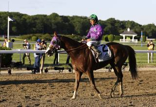 Victor Espinoza rides California Chrome after finishing fourth in the Belmont Stakes horse race, Saturday, June 7, 2014, in Elmont, N.Y. (AP Photo/Seth Wenig)