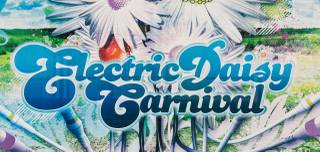 The 2013 Electric Daisy Carnival from Friday, June 21, through Sunday, June 23, 2013, at Las Vegas Motor Speedway.