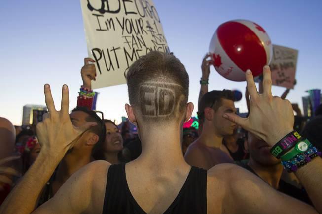 Jesse Berube of Dallas-Ft. Worth shows off his haircut during the final day of the 2014 Electric Daisy Carnival (EDC) at the Las Vegas Motor Speedway Sunday, June 22, 2014.