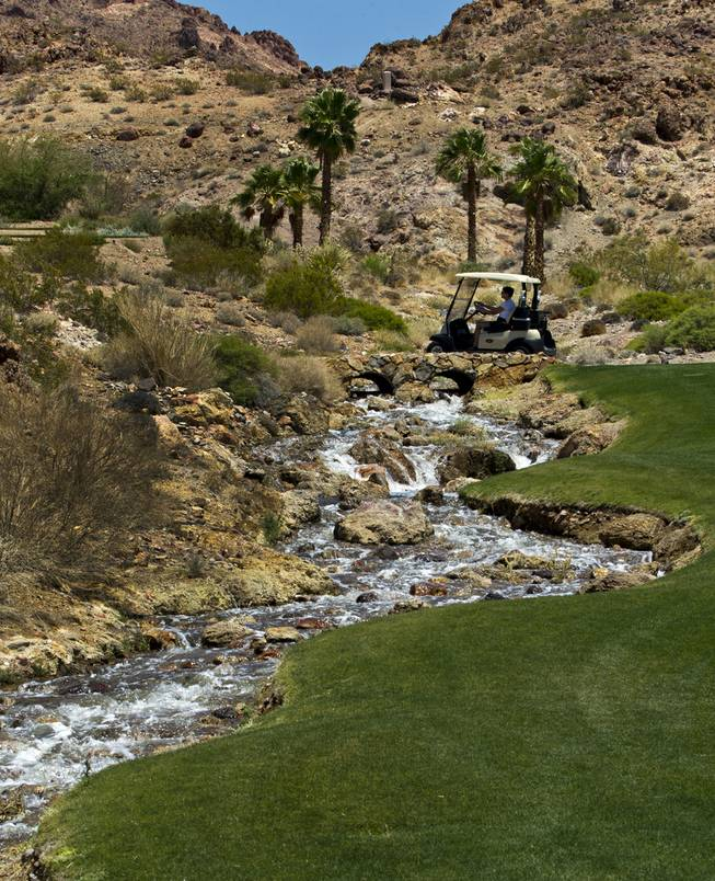 HELP of Southern Nevada hosts its 20th Annual Golfers Roundup at Cascata Golf Course in Boulder City on Tuesday, June 24, 2014.
