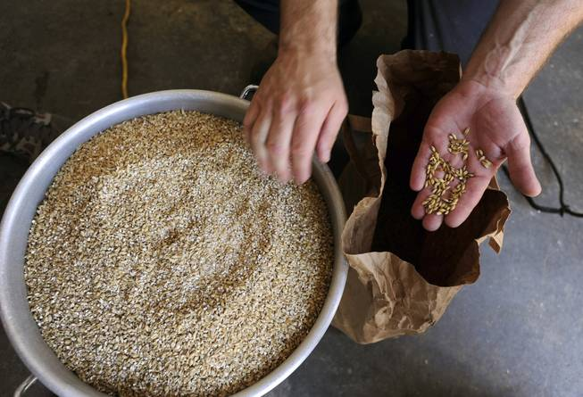 Army veteran Eric Johnson, of Fremont, Calif., shows grains that will be used in a Valor Double IPA at Uncle Sam's Misguided Brewery in Livermore, Calif., on Monday, May 26, 2014. The brewery is run by fellow veterans and co-owners Josh Laine and Fara Eve Barnes.