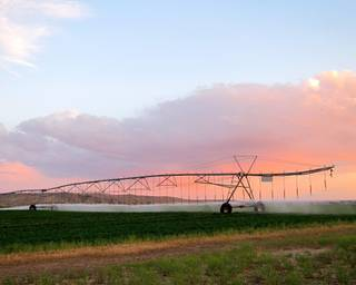Sprinklers irrigate alfalfa on the Escalante Ranch, in northeast Utah, on June 11, 2014. The ranch is the largest Chinese-owned alfalfa ranch in the United States, used to supply hay for China's growing dairy industry.