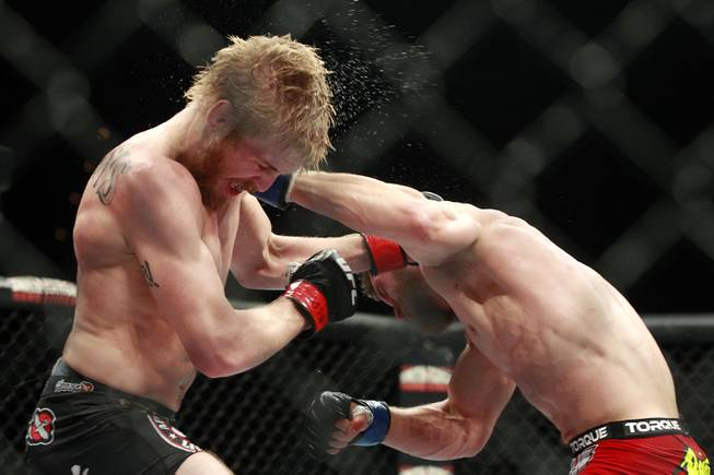 Justin Scoggins is tagged with a left from Dustin Ortiz during their fight at The Ultimate Fighter 19 Finale Sunday, July 6, 2014 at the Mandalay Bay Events Center. Ortiz won by decision.