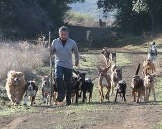 """Dog Whisperer"" star Cesar Millan."