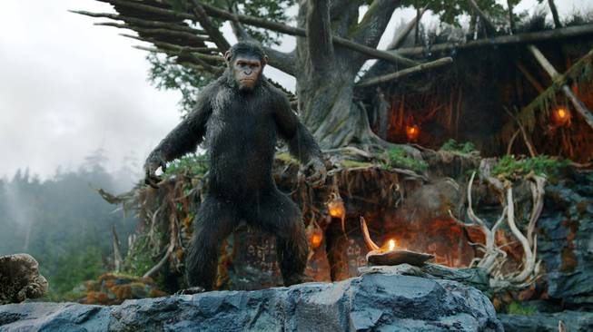 "This photo released by Twentieth Century Fox Film Corp. shows Andy Serkis as Caesar in a scene from ""Dawn of the Planet of the Apes."""