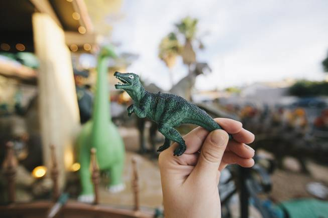 Every visitor can take a complimentary mini dinosaur home with them after visiting Shang-Gri La Prehistoric Park in Las Vegas, Nev on July 12, 2014.