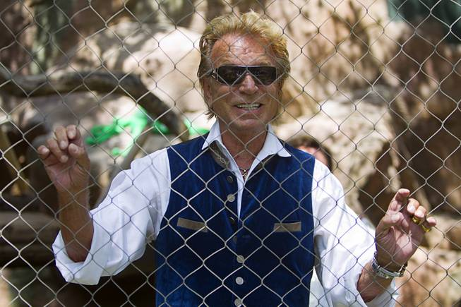 Siegfried Fischbacher jokes that the fence is to protect himself and Roy Horn from the media before introducing new white lion cubs at Siegfried & Roy's Secret Garden and Dolphin Habitat Thursday, July 17, 2014. Siegfried and Roy Horn introduced the three 14-week-old cubs, born in South Africa, which will bring new genes into Siegfried and Roy's conservation program.