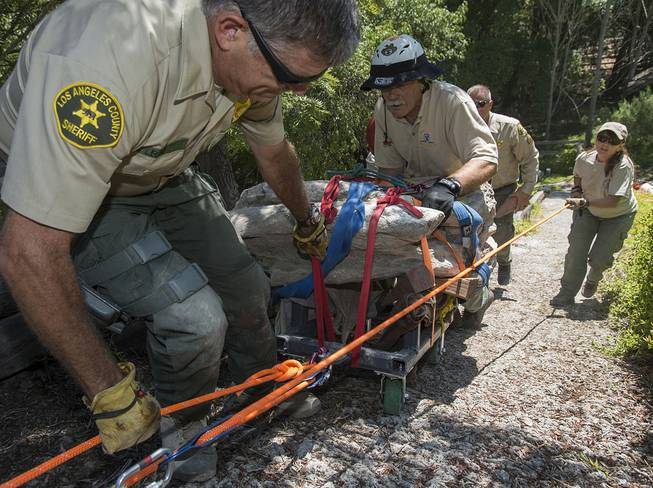 Members of the Los Angeles Sheriff's Department Search and Rescue team, Mike Leum, left, John McKently, center, and Janet Henderson, right, help to roll a 16-17-million-year-old fossil lodged in a rock weighing about 2,000 pounds up a steep hillside on a customized cart in Rancho Palos Verdes, Calif. on Friday, Aug. 1, 2014.
