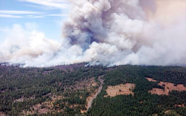 This Aug. 1, 2014, photo provided by the U.S. Forest Service shows the Eiler Fire burning Old Station, Calif. The Eiler Fire near Old Station has consumed nearly 23,000 acres and destroyed eight homes in the process, according to fire officials, Sunday, Aug. 3, 2014.