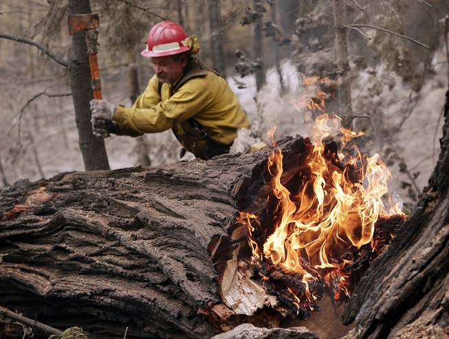 Tracy Porter, of Paradise, Calif., uses an ax to fragment a burning tree damaged by the Eiler Fire on Monday, Aug. 4, 2014, in the Lassen National Park near Hat Creek, Calif. Firefighters were focusing on two wildfires near each other in Northern California that have burned through more than 100 square miles of terrain.