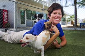 Christine Robinson, executive director of the Animal Foundation, plays with chihuahua puppies at the shelter Tuesday Aug. 4, 2014.