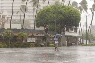 A man uses an umbrella against the rain as he walks across Kapiolani Blvd in Waikiki in Honolulu on Friday, Aug. 8, 2014. Rain and wind gusts are hitting parts of Oahu as Tropical Storm Iselle heads towards the island. Iselle is the first tropical storm to hit the state in 22 years.