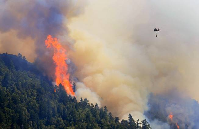 An Air National Guard helicopter moves in to make a water drop as the Lodge Fire Complex between Leggett and Laytonville, Calif., on Friday, Aug. 8, 2014. Officials say eight firefighters who suffered burns while battling a wildfire in Northern California have been taken to the hospital.