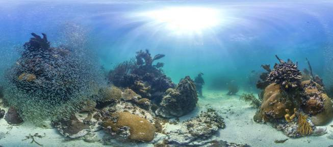"This Tuesday, Aug. 5, 2014, photo provided by Catlin Seaview Survey shows protected reefs in the Florida Keys. U.S. government scientists hope people will soon be able to go online and get a 360-degree view of reefs and other underwater wonders, much like Google Map's ""street view"" lets people look at homes."