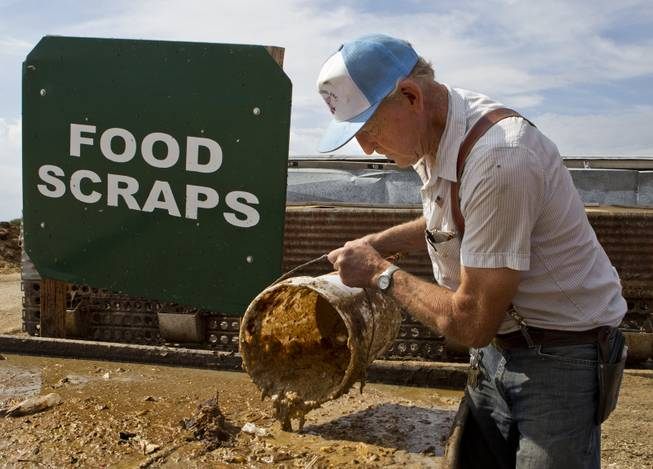 Bob Combs of R.C. Farms Inc. scoops up a bucket of freshly cooked food scraps for his pigs on Wednesday, Aug. 13, 2014.