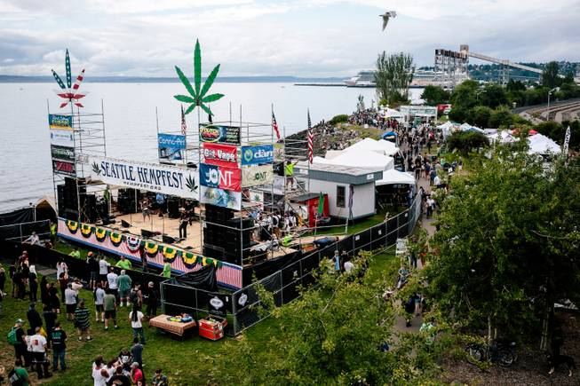 Crowds begin to fill the grounds for Hempfest, Seattle's annual gathering to advocate the decriminalization of marijuana, Friday, Aug. 15, 2014, at Myrtle Edwards Park in Seattle.