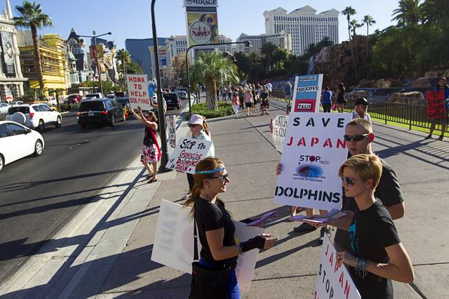 Activists picket in front of the Mirage Sunday, Aug. 30, 2014. About 30 people came out to protest the annual capture and killing of dolphins in Taiji, Japan.
