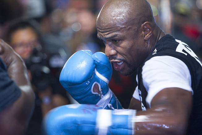 WBC/WBA welterweight champion Floyd Mayweather Jr. hits a body pad worn by co-trainer Nate Jones during a media day at the Mayweather Boxing Club Tuesday, Sept. 2, 2014. Mayweather will face Marcos Maidana of Argentina in a rematch at the MGM Grand Garden Arena on Saturday, Sept. 13.