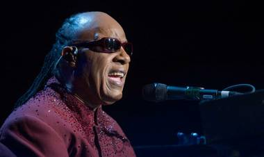 Stevie Wonder surprised concertgoers in London Saturday night by announcing that he will take a break from performing so that he can receive a kidney transplant this fall ...