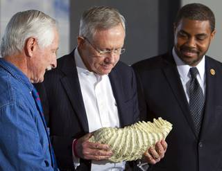 Senate Majority Leader Harry Reid (D-NV), center, holds a cast of a mammoth tooth as Congressman Steven Horsford (D-NV), right, looks on during a news conference marking the creation of the Tule Springs National Monument at the Las Vegas Paiute Resort northwest of Las Vegas, Monday, Dec. 22, 2014. The 22,650 acre site on the northern edge of the Las Vegas Valley features fossils from the Ice Age, including mammoths, bison, American Lions, camelops and sloths.