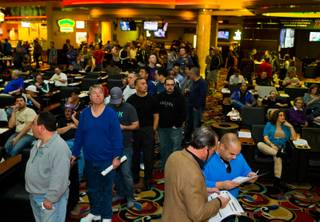 Lines continue to grow for Superbowl sports betting at the Westgate Las Vegas Resort & Casino on Saturday, January 31, 2015.