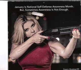 A picture from the January page in Assemblymember Michele Fiore's 2016 calendar.
