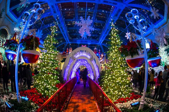 The annual Christmas display at Bellagio Conservatory & Botanical Gardens on Thursday, Dec. 24, 2015, on the Las Vegas Strip.